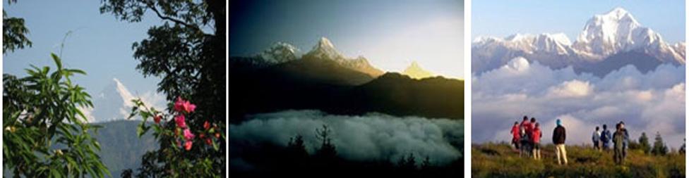 Pokhara-Poonhill Yoga Tour